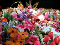 Andrea Mastrovito - Enzyklopedie der Gartenblumen