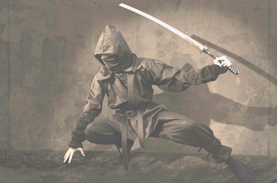 word ninja - cut useless words from your writing