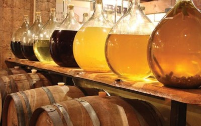 Mead brewing quick reference guide for beginners