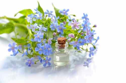 huile de violette