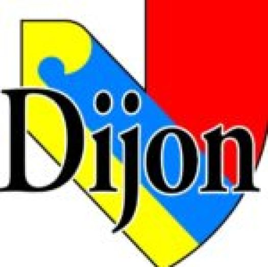 tourisme a Dijon - bons plans- combines - bonnes adresses