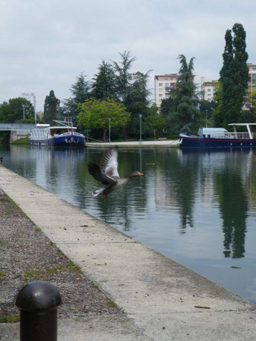 Port, canal,tourisme fluvial,jogging,ballade