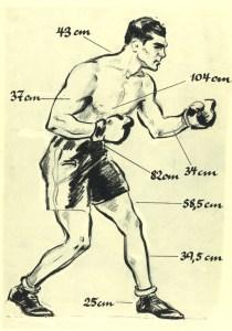 Der Körpermaße des Boxers Max Schmeling