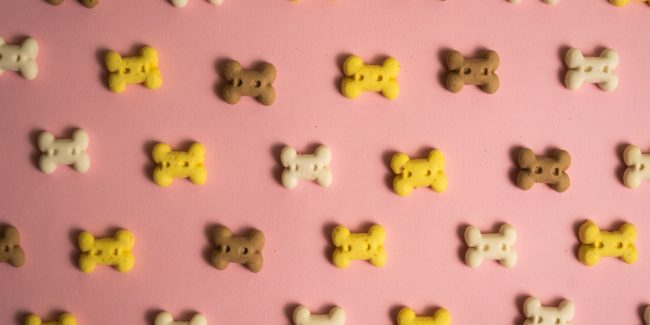 Yellow, brown, and white done bones spaced out on a pink background.