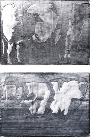 Vache 07 et 09, 1996