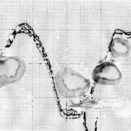 Agonie de l'eau 03, 2001