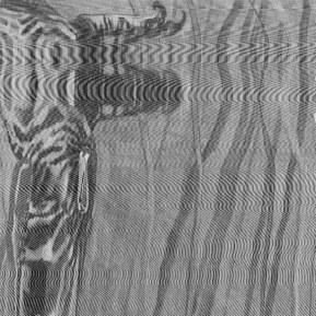 Figures de l'eau 45, 2001