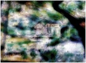 Saturation (arbre tordu 08), 2010