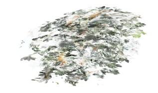 2017-La flèche de plomb 05, 200 x 137 cm