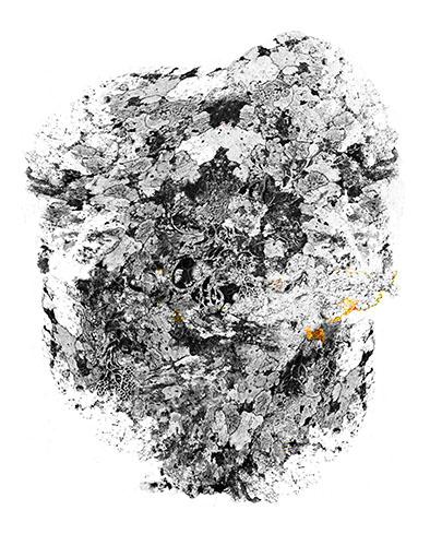 2018-Matière-grise (détail 2), 137 x 160 cm, dessin sur calque