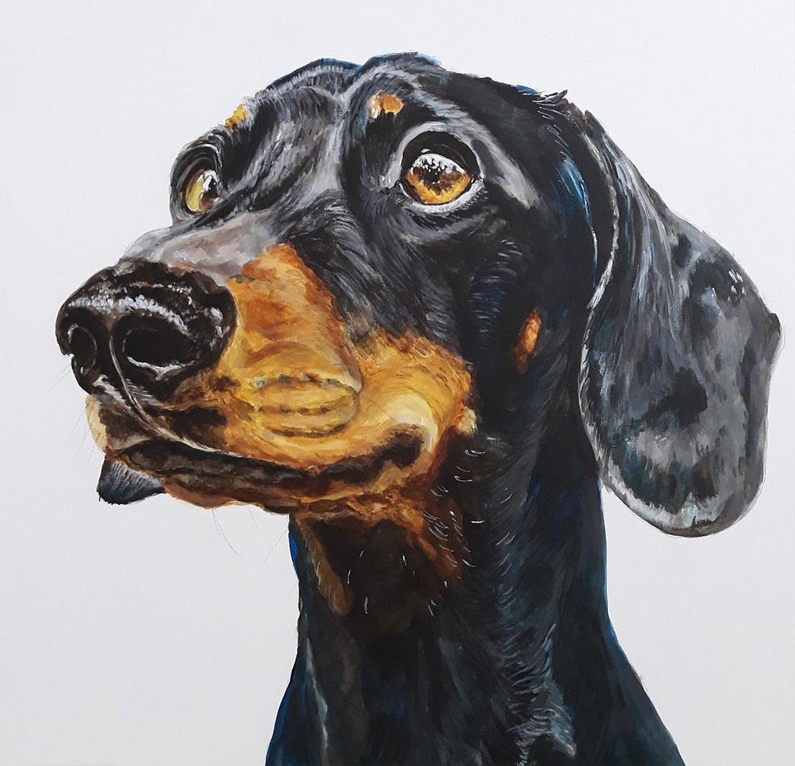 jean-ballands-australian-port-macquarie-artis-dog-portraits
