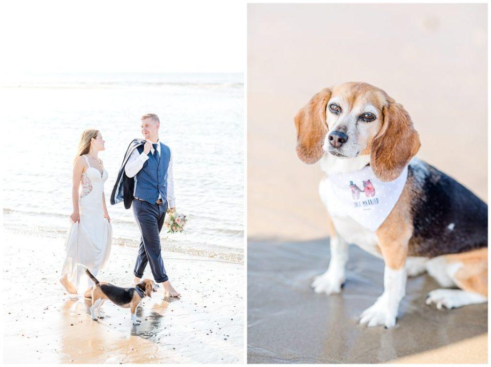 bryllupsbilleder med hund af bryllupsfotograf