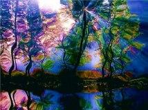 jewels reflected