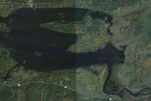 Wilcox Island - St Croix Flowage