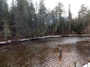 World-class trout fishing on the Brule River
