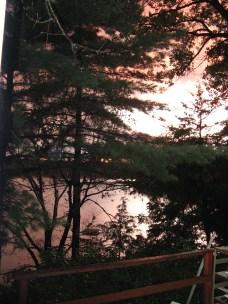 gardenremodel and cottage2009 024