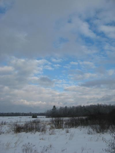 SnowymorningonwesterDec172013 019
