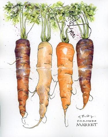 carrots-2015_800