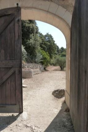 Cour du chevet et terrasse (21)