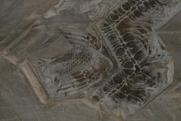 Décoration des chapiteaux - L'aigle symbole de Jean l'évangéliste