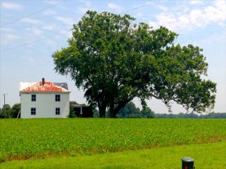 The West House at Malvern Hill Battlefield.