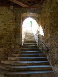 La cave (3)