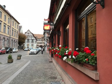 red-white flowers in Colmar