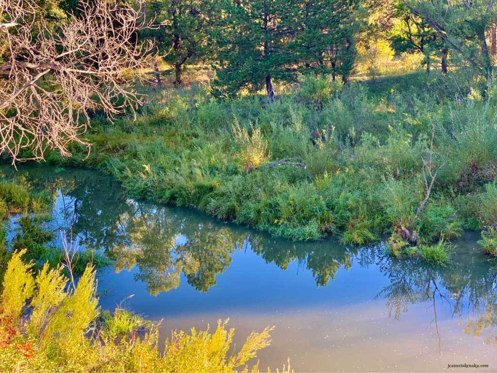 A calm creek reflecting trees in its still waters . . . how we can feel when we don't let a fear of failure dictate our mindset