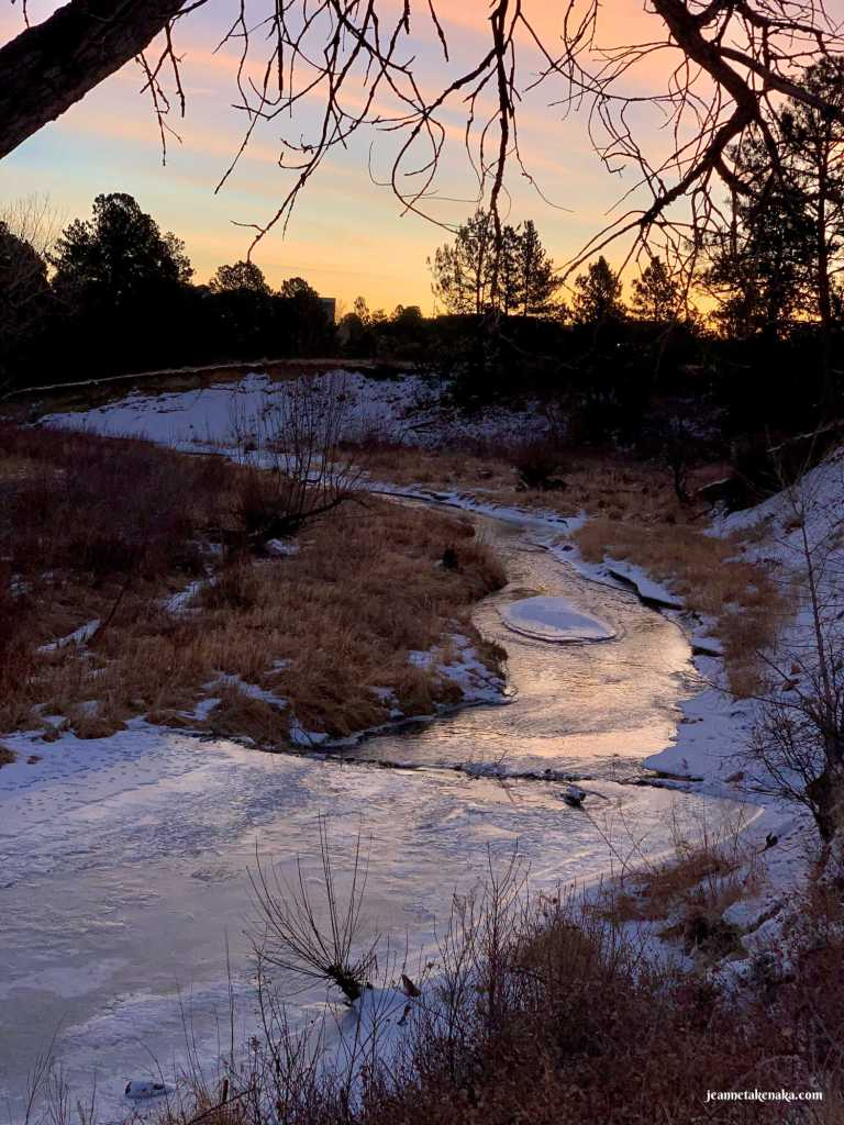 A contrast of light and dark where part of a creek is icy and part is flowing water and early morning sunlight reflects on it