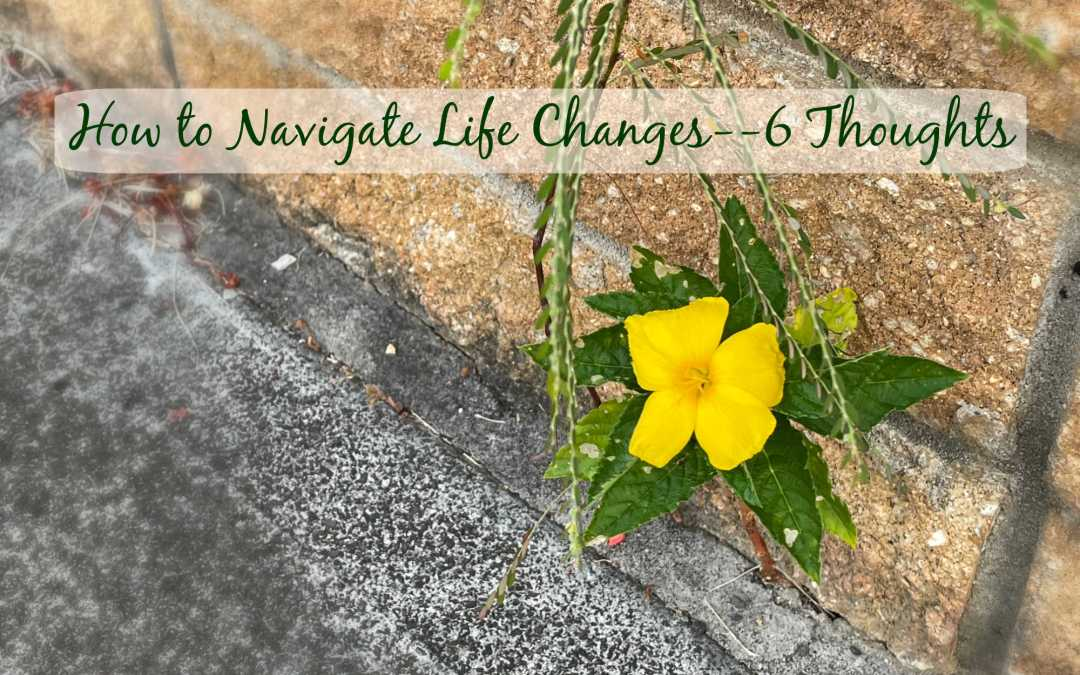 How to Navigate Life Changes—6 Thoughts