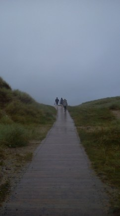 A timber path to the sea