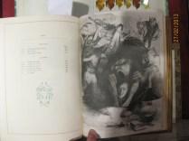 9 Les fleurs du mal 1899