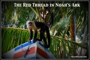 The Red Thread in Noah's Ark -- The Work