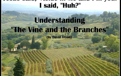 """Understanding The Vine and the Branches: Jesus said, """"Abide in Me, and I in you."""" I said, """"Huh?"""""""