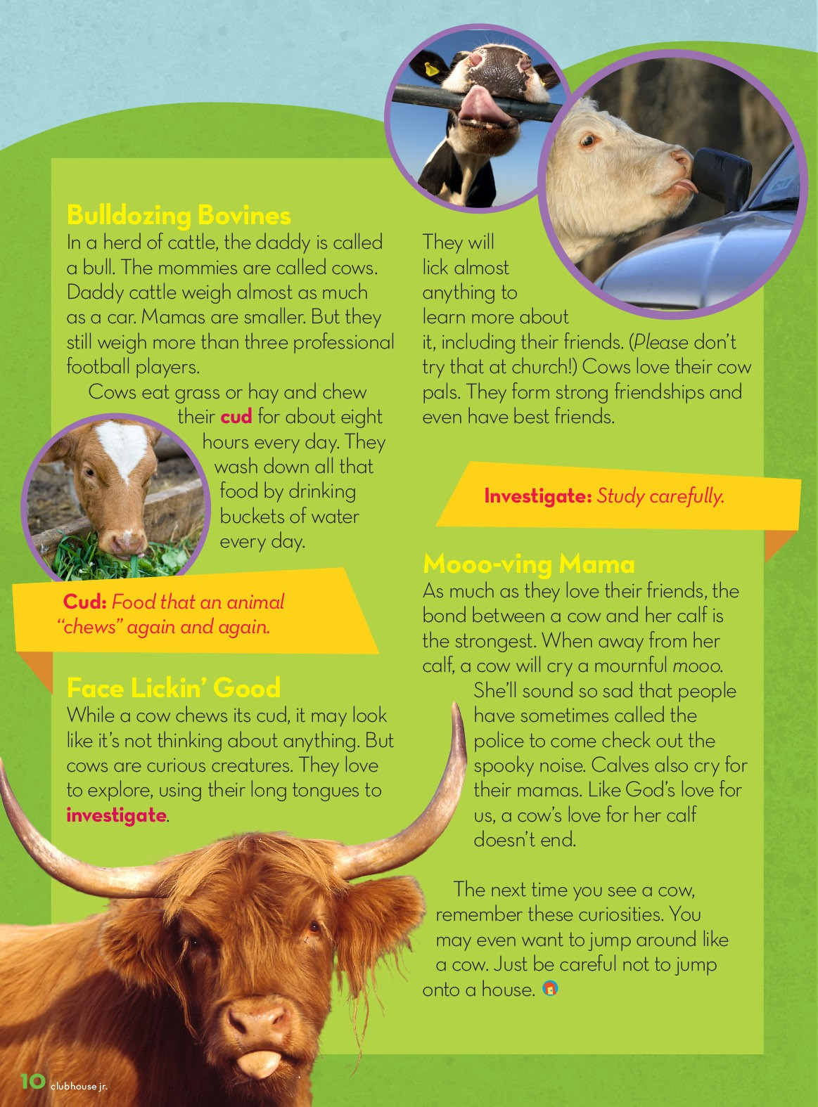 How Now Mooo Cow Clubhouse Jr Magazine