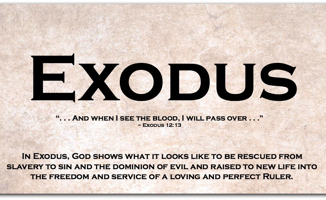 EXODUS ~ A Super-Short Summary (and a Less-Than-Super-Short Summary)