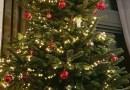 Kerst in beeld bij de Zonnebloem