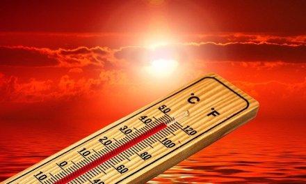7 solutions rapides pour améliorer le confort thermique d'une habitation sans gros travaux