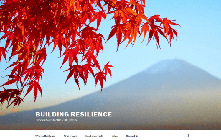 screenshot of Building Resilience