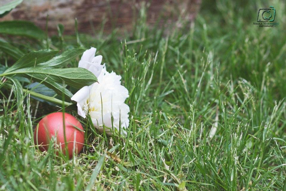 UskrsJedan-frajer-i-bidermajerjajebozurMarinkovic-photography.jpg