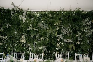 Jedanfrajeribidermajer_wedding_green_wall