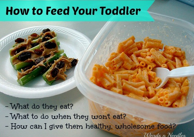 How to Feed a Picky Toddler