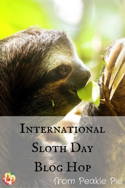 internationalsloth day blog hop