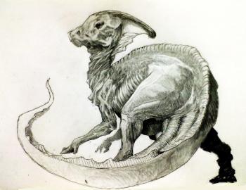 parasaure