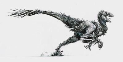 raptor à plumes final - Copie