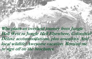 Justin Edison's Tempest Road teaser featuring a b&w crocodile with snarky vacation comments from hero MacLeod.