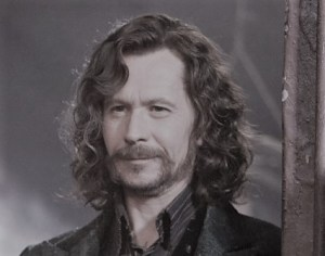 A smug Sirius Black, played by Gary Oldman, from the Harry Potter series.