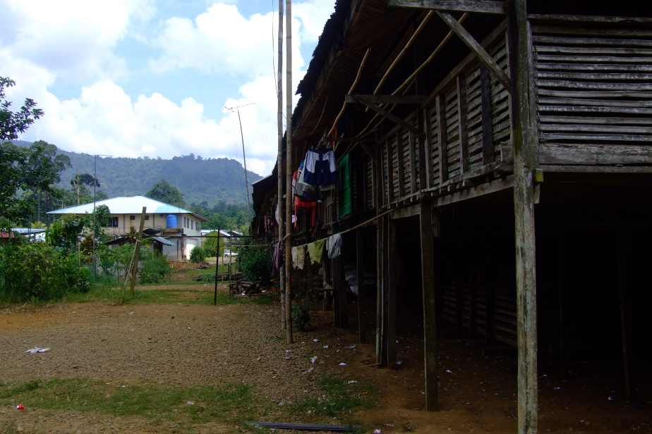 Outside view of the longhouse, and some of the village building in the background