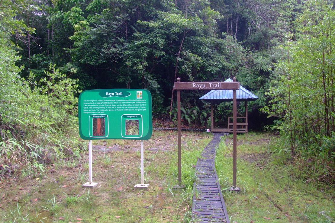 the start of the trail to matang wildlife santuary