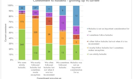 A Survey of Yeshiva High School Graduates:Summary and Implications